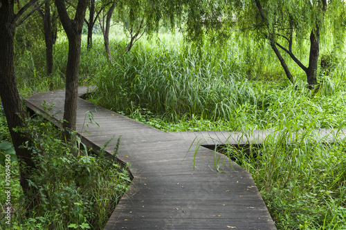 Quot wooden plank road stock photo and royalty free images on