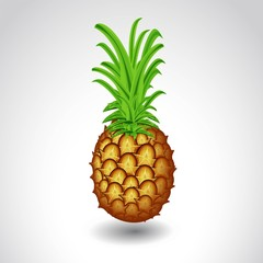 pineapple isolated on white background ripe juicy