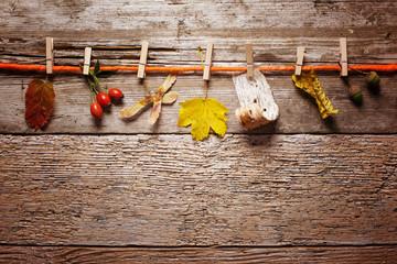 Herbst boten