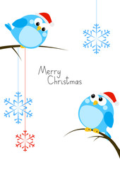 Cute little birds with Christmas snowflakes
