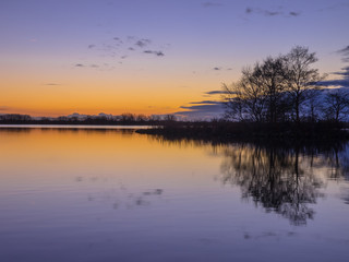 Wall Mural - Trees and Clouds reflecting in a lake during a beautiful Sunset