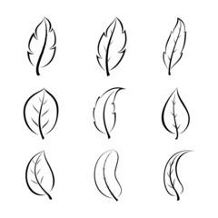 Leaf line design