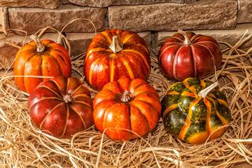 Autumn Pumkins