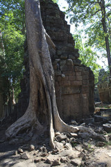 Angkor's popular temples, Cambodia