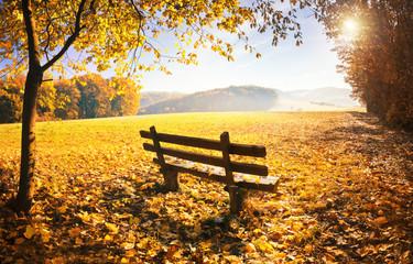 Wall Mural - Herbstlandschaft mit Sonnenschein