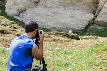 Ragazzo fotografa volpe in montagna
