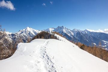 Wall Mural - panorama di montagna invernale