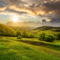 trees near valley in mountains  on hillsideat sunset