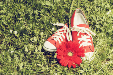 Fotobehang Picknick Red sneakers with flower. Toned image
