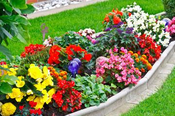 Bilder und videos suchen richen - Plantas exteriores todo el ano ...