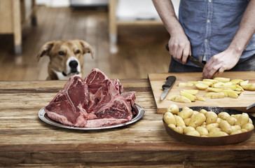 Mann in der Küche bereitet Kartoffeln und Steaks, Hund beobachtet