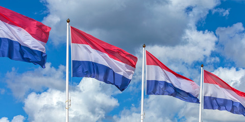 Row of four Dutch national flags