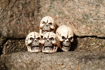 Four skulls on a stony background.
