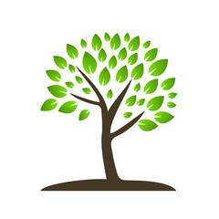 вектор зелёное дерево