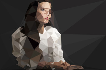 Fotoväggar - Woman portrait vector geometric modern illustration