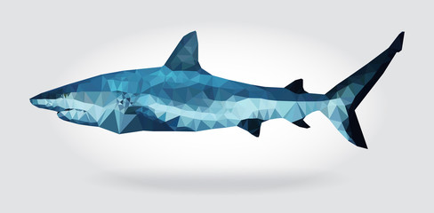 Klistermärke - Shark body vector isolated geometric modern illustration