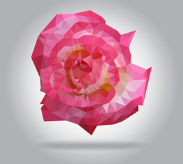 Wall Mural - Rose flower vector isolated geometric illustration