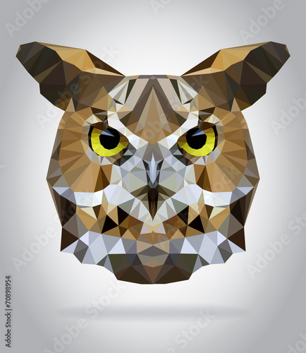 Wall mural Owl head vector isolated geometric illustration
