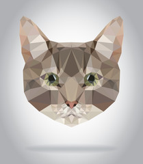 Wall Mural - Cat head vector isolated, geometric modern illustration