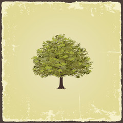 Old tree on vintage paper. Vector illustration