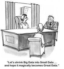 """Let's shrink Big Data into Small Data...becomes Great Data."""