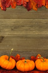 Vertical autumn leaves and pumpkin frame against aged wood
