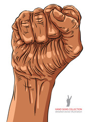 Clenched fist held high in protest hand sign, African ethnicity,