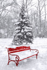 Winter scene, background. Black and white with red element.