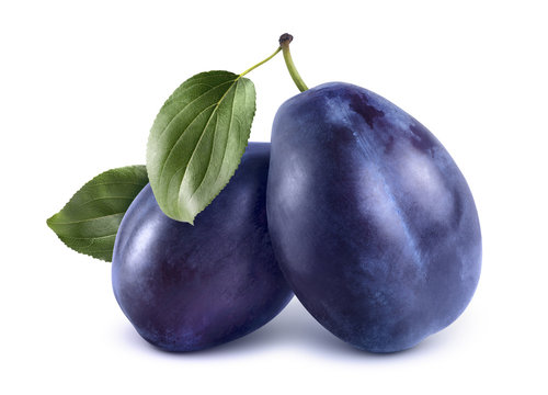 Two blue plums isolated on white background