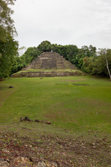Jaguar Temple with Field