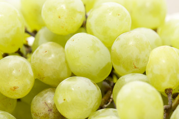 green grapes. close-up