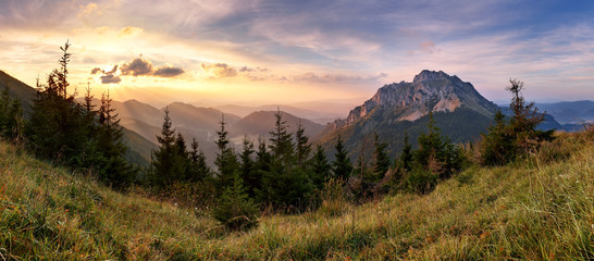 Aluminium Prints Mountains Slovakia mountain peak Rozsutec