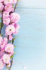 Floral bacjground.