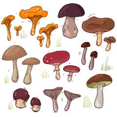 Big mushrooms set