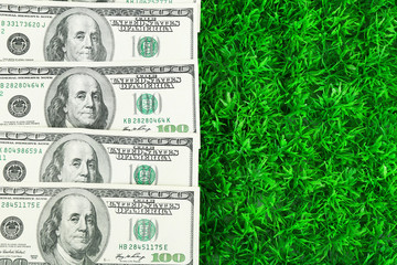 Lot of one hundred dollar bills  on grass