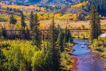 Wall Mural - Colorado Fall Foliage