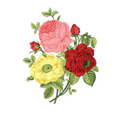 Floral card. Bouquet of roses, dogrose and anemone.