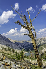 Dead tree and rock mountains with a small lake in Idaho