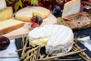 Camembert of Normandy with different French cheeses