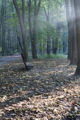 jesień w parku ławeczka