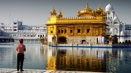 Fototapete - golden temple