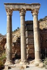 Ancient columns in Ephesus,Turkey