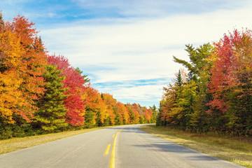 Road to Keji in fall
