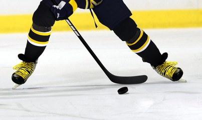 Ice Hockey Player on Rink