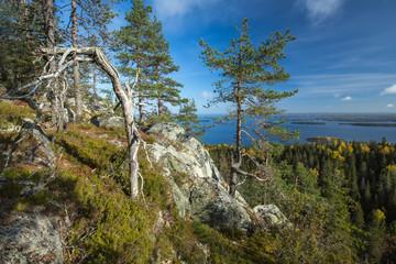 Fototapete - Autumnal view from Koli to Lake Pielinen