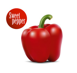 Photo-realistic vector illustration of red sweet pepper