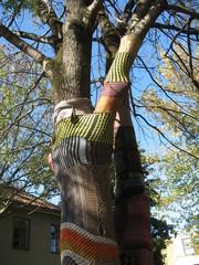 Дерево , одетое в шерстяные одежды  городскими рукодельницами
