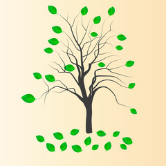 vector drawing silhouettes of tree with leaves on the tree benea
