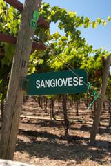 Sangiovese Signpost of California