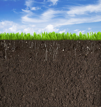 Soil or dirt section with grass under sky as background